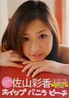 佐山彩香 写真集 「ホイップ バニラ ピーチ」